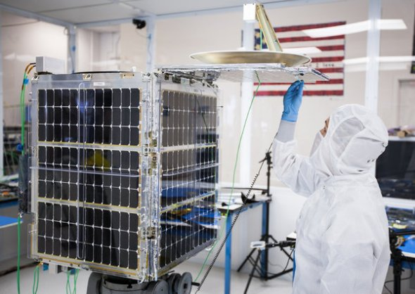 Microsatellites - What Big Eyes They Have - NYTimes.com