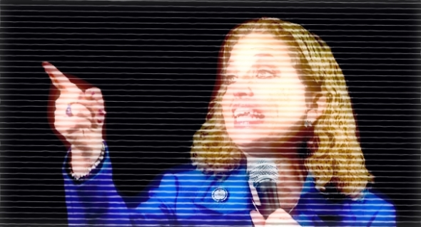 Debbie Wasserman Schultz has said Democrats will run on the Affordable Care Act.