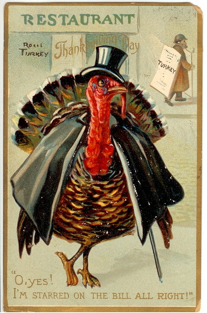 TurkeyOnTheBill