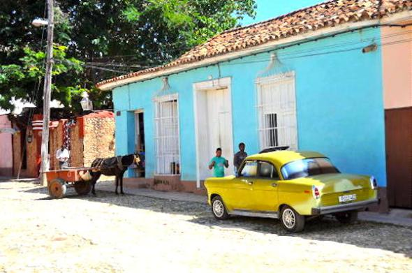 Animal and Car Trinidad