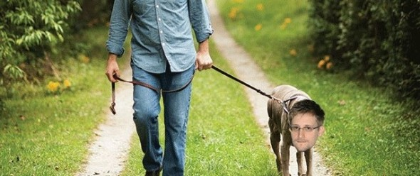 man-walking-dog-640-e1389390875336
