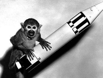 monkey-rocket