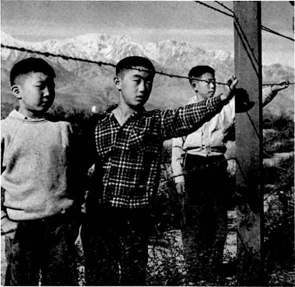 japaneseInternment