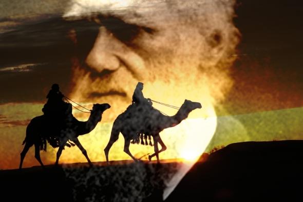 darwin-arabia