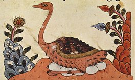 From The Book of Animals of al-Jahiz, Syria, fourteenth century