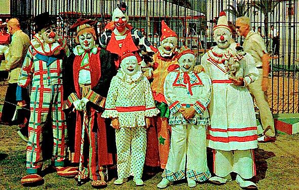 clown-counsel