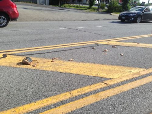 Pieces of meat that apparently fell from a truck closed down one lane of Aviation Road in Queensbury late Thursday afternoon, July 10, 2014. (Don Lehman -- dlehman@poststar.com)