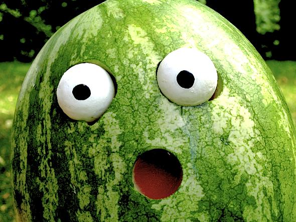 frightened-melon
