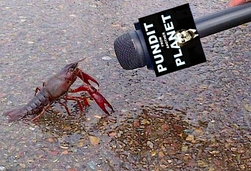 """Next they'll be coming after my tail! Can't we start a similar public awareness campaign about lobster bisque?"""