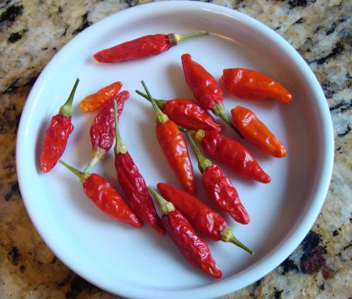 Tabasco-Pepper-3