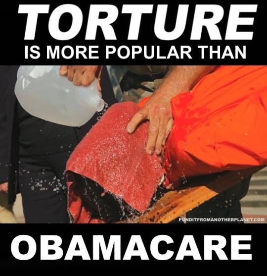 torture-obamacare-poster
