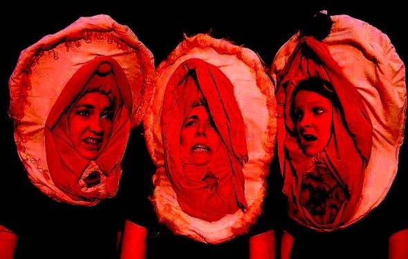vagina-costumes