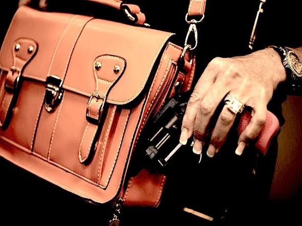 gun-purse