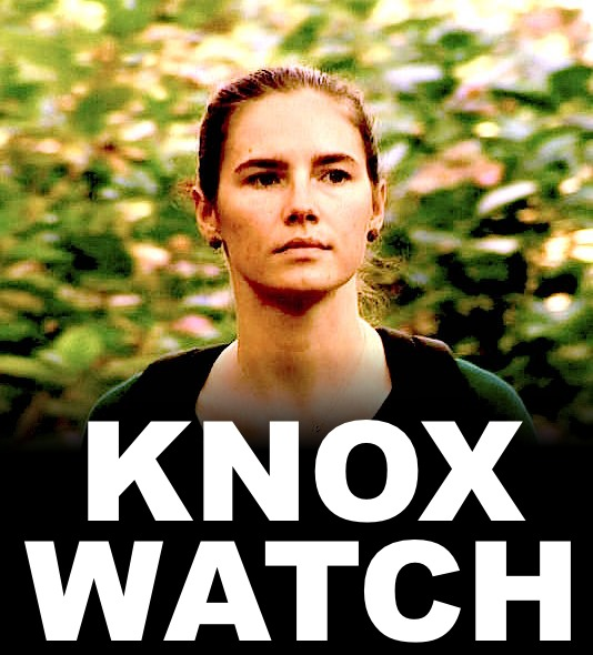 knox-watch