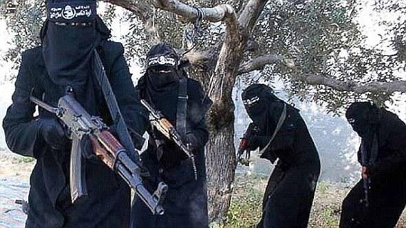 ISIS-guns