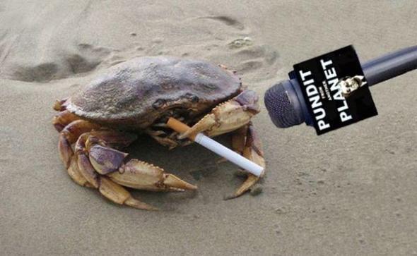 Mr-Crab