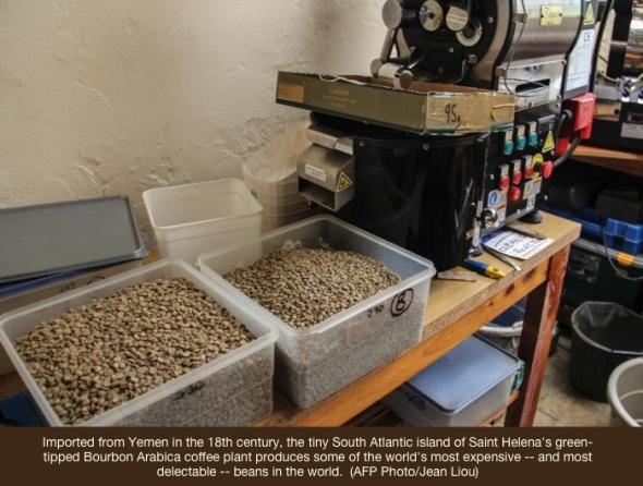 Saint-Helena-beans