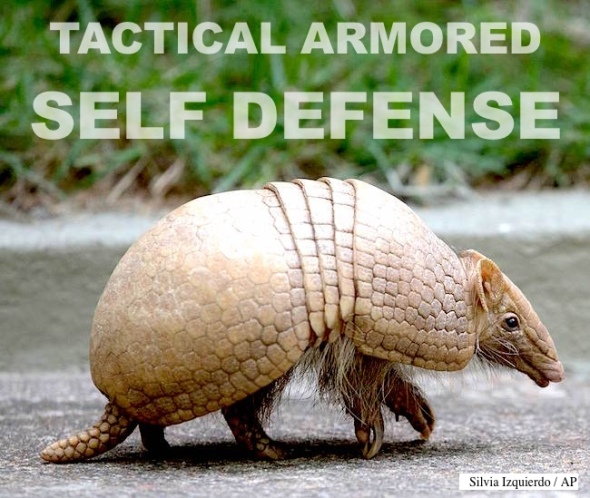 armadillo-defense