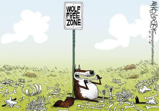 wolf-free zone