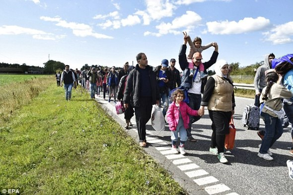 A large group of migrants walk down a a highway in Denmark, headed for the Swedish border. The Swedish Foreign Minister has claimed her country is facing collapse due to the mass influx of refugees
