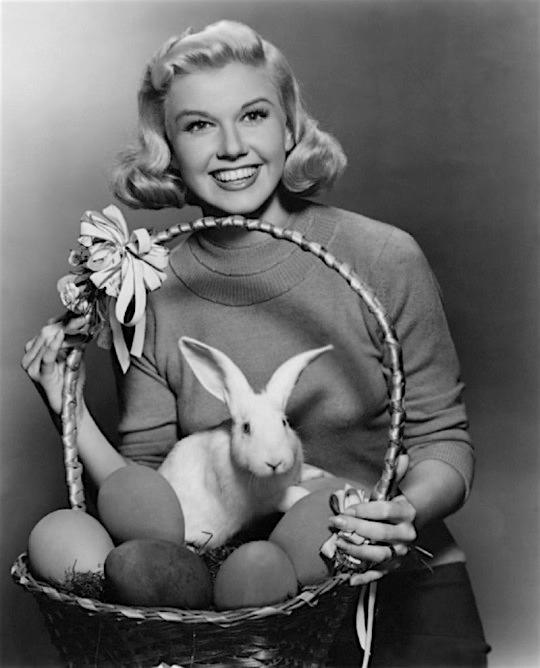 Doris-day-bunny