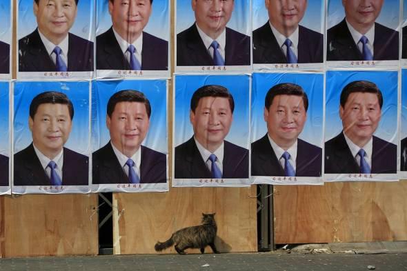 Xi-wall