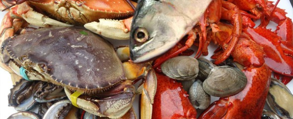 seafood-safety