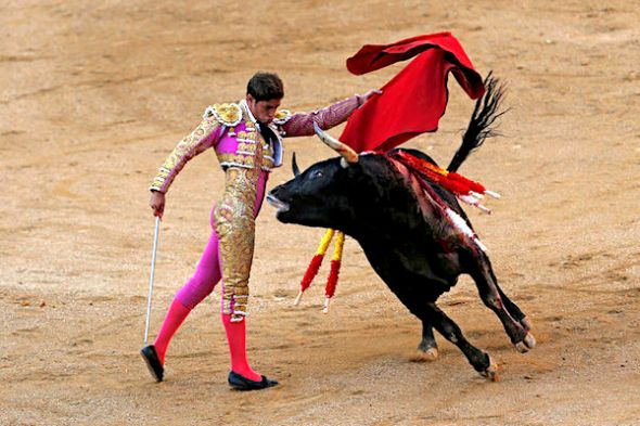 Spanish bullfighter Mario Palacios performs with an Aguadulce ranch fighting bull during a bullfight at the Las Ventas bullring in Madrid, Spain, Sunday, Oct. 9, 2016. (AP Photo/Francisco Seco)