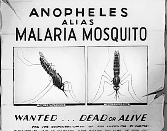 mosquito-poster