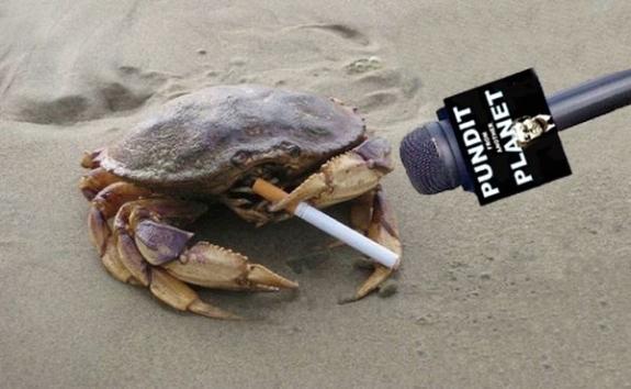 crab-nervous