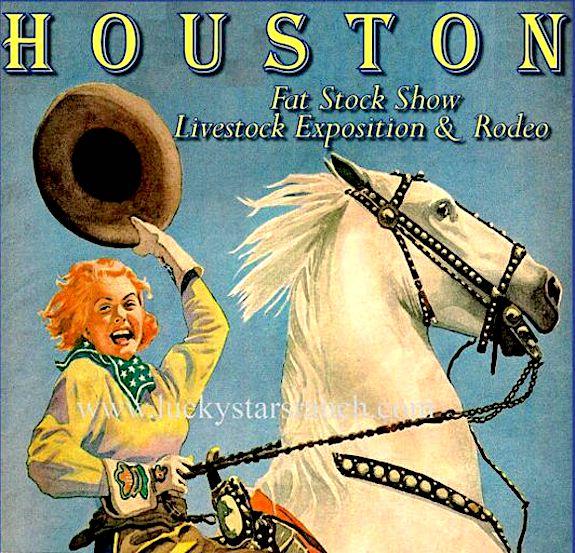 houston-livestock